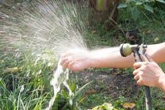 Tvätta dina händer, når du har planterat ett träd royaltyfria foton