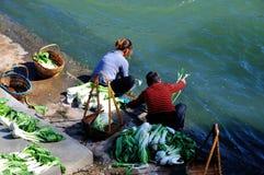 Tvätta grönsakerna i hönafloden Royaltyfri Foto
