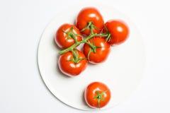Tvättad mogen tomatgrupp på plattan på vit bakgrund royaltyfria foton