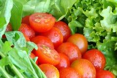 tvättade nya grönsaker royaltyfri fotografi