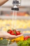 Tvättade nya grönsaker Royaltyfria Foton