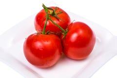 Tvättade nya mogna tomater med vattensmå droppar Arkivbilder