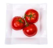 Tvättade nya mogna tomater med vattensmå droppar Arkivfoton