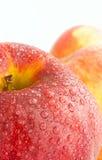 Tvättade röda äpplen Arkivbilder