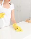 Tvättande disk för kvinna 库存图片