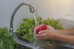 Tvättande grönsaker 库存照片