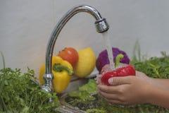 Tvättande grönsaker 免版税库存图片