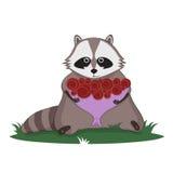 Tvättbjörn och bukett av rosor Vektor Illustrationer