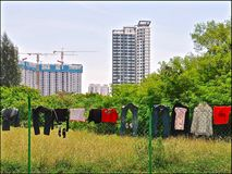 Tvätteri som torkar på ett staket mot en stads- bakgrund av högväxta moderna nya flerfamiljshus royaltyfria bilder