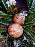 Två ägg som är färgglade, påsk arkivbild