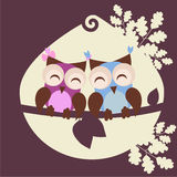 Två älska owls Arkivfoton