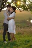 Två älsklingar som kysser under träd på solnedgången Royaltyfri Bild