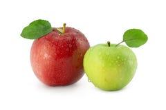 Två äpplen Royaltyfria Foton