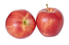 Två äpplen Fotografering för Bildbyråer