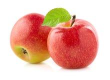 Två äpplen med bladet Arkivfoto