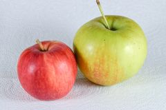 Två äpplen på vit bakgrund royaltyfri bild