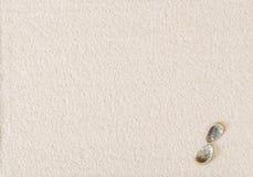 Två abaloneskal på plan vit sandyttersida Arkivfoto