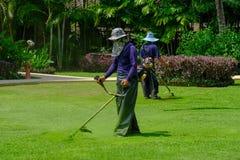 Två arbetarträdgårdsmästares snitt det gröna gräset med gräsklippningsmaskinbeskäraren på fältet royaltyfri fotografi