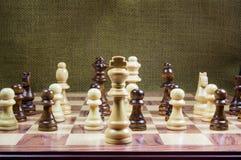 Två arméer under ett ledarskap royaltyfri foto