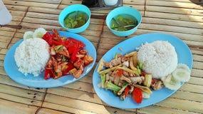 Två av mina mest kära traditionella asiatiska foods royaltyfria bilder