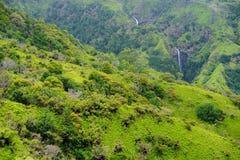 Två avlägsna vattenfall i den tropiska hawaianska regnskogen, Maui, Hawaii Arkivfoto