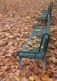 Två bänkar i parkera med lövverk lite varstans Arkivfoto