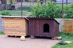 Två bås för hundhus i gården royaltyfri bild