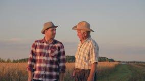 Två bönder på fältet av skördar att meddela och instämma stock video