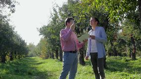 Två bönder som förbereder sig att avsluta en överenskommelse i äpplefruktträdgården stock video
