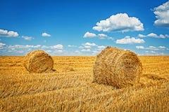 Två baler av vetesugrör på skördat fält Arkivbild