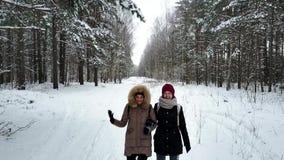 Två barn och attraktiva kvinnor som promenerar skog`en s, skuggar stock video