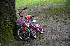 Två barns cyklar sid - förbi - sid på en trädstam Arkivbilder