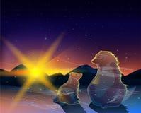 Två björnar som håller ögonen på soluppgång i den kalla ökenvektorn Royaltyfria Foton