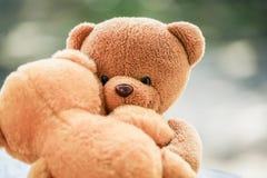Två björndockor Fotografering för Bildbyråer