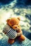 Två björndockor Arkivfoto