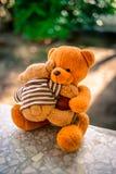 Två björndockor Royaltyfria Bilder