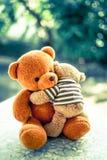 Två björndockor Royaltyfri Bild