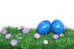 Två blåa ägg Fotografering för Bildbyråer