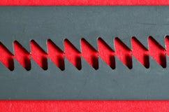 Två blad på rött Fotografering för Bildbyråer