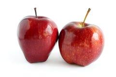 Två blanka röda äpplen Arkivfoto