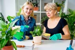 Två blomsterhandlare i ett växthus Royaltyfria Bilder