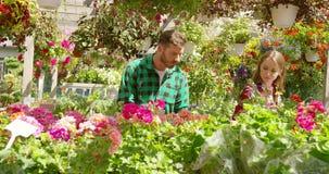 Två blomsterhandlare i trädgård stock video