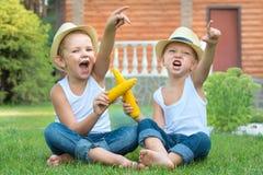 Två bröder som sitter på gräset och att äta havre på majskolven i trädgården Roliga lekar, skratt royaltyfri fotografi