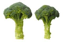 Två broccoli på vit royaltyfri foto