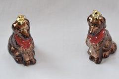 Två bruna hundkapplöpning för leksak Arkivbild