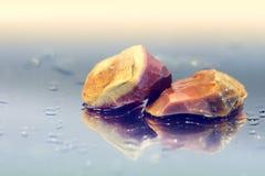 Två bruna mineraler Royaltyfri Fotografi