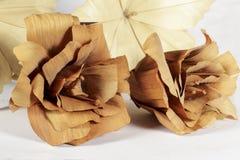 Två bruna pappers- blommor framme av annan kräm Royaltyfri Bild