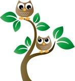 Två bruna ugglor i ett träd royaltyfri illustrationer
