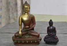 Två Buddhastatyer för fred arkivbilder