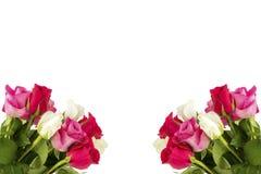 Två buketter med rosor arkivfoton